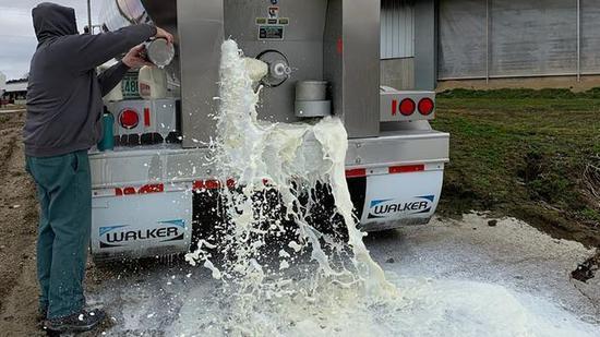 美国经济衰退信号?奶农又开始倒牛奶了……
